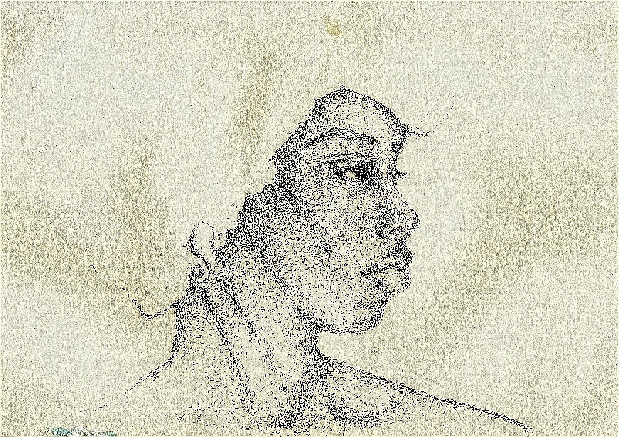 black art pontilhismo, nanquin