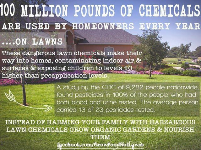 Chemicals Organic Lawn Care Lawn Care Lawn