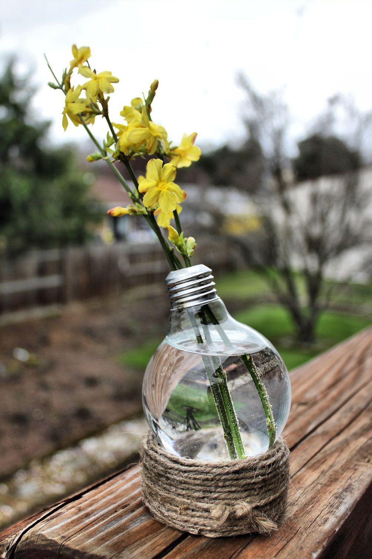 Twine wrapped base light bulb terrarium vase diy and crafts