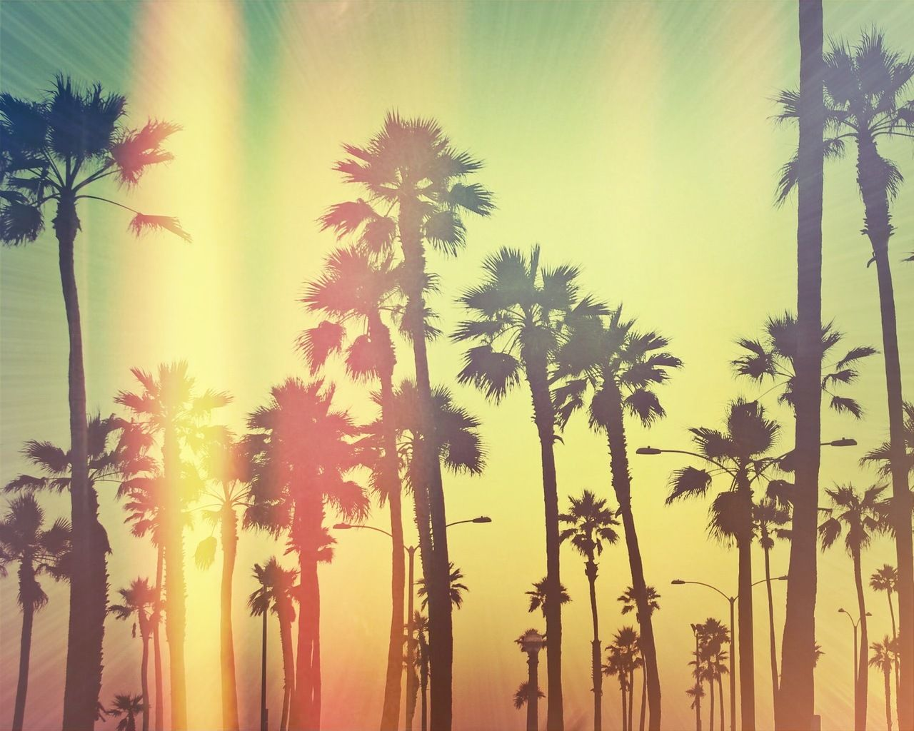 California Wallpaper Tumblr Background 1 HD Wallpapers