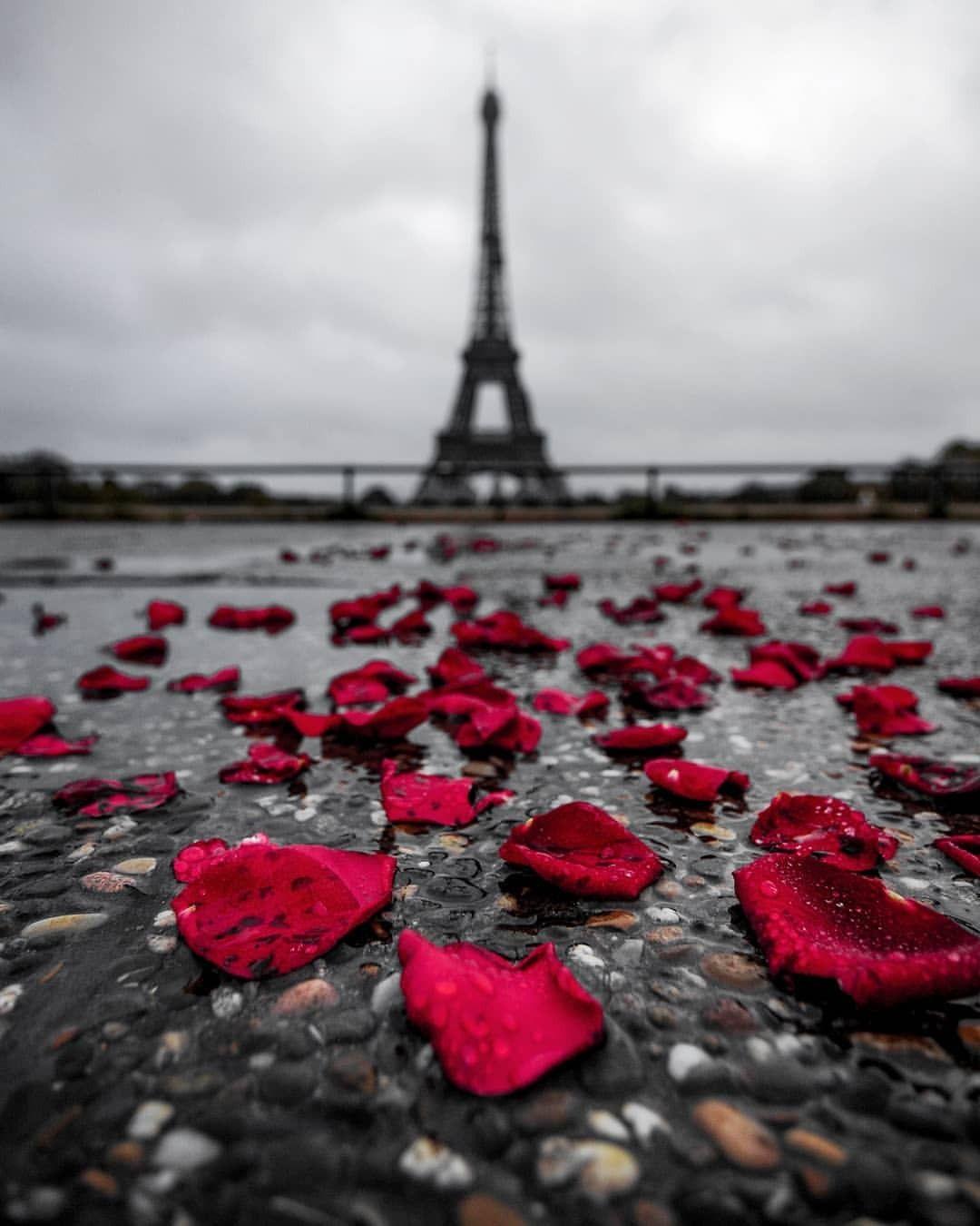 Paris France Europe City Of Lovers Beautiful Paris Paris
