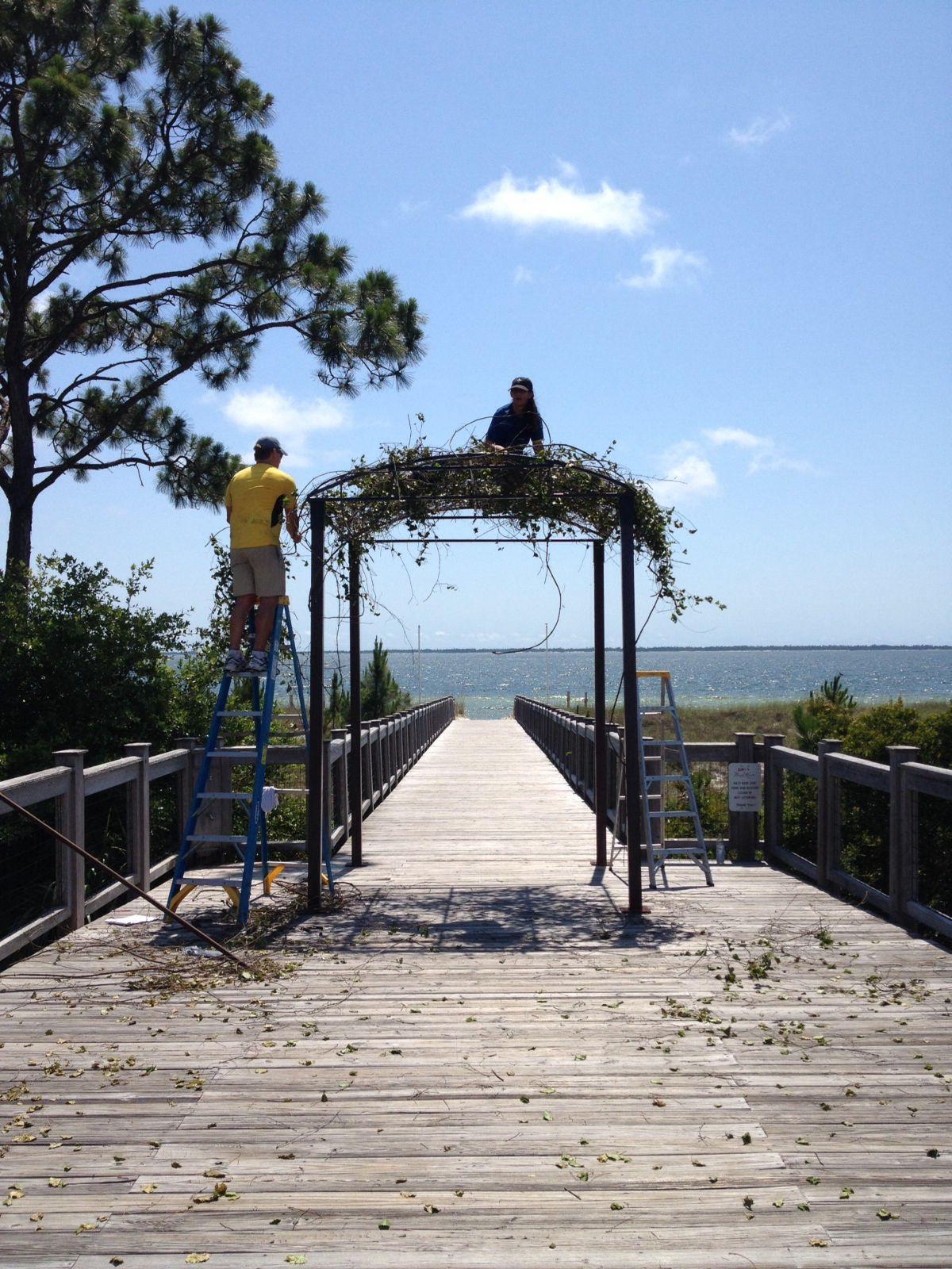 high cotton hard at work while installing ceremony  it looked gorgeous !http://michellecastlephotography.com/blog/rachell-jonathon-port-st-joe-fl-photographers-port-st-joe-fl-weddings-windmark-port-st-joe/