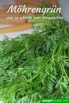 Photo of Möhrengrün nicht wegwerfen: 3 köstliche Rezepte mit den gesunden Blättern