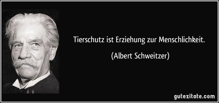 Tierschutz ist Erziehung zur Menschlichkeit. (Albert Schweitzer