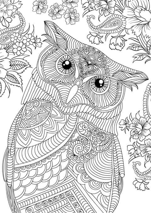 Owl Coloring Pages Adult Books Colorful Crafts Color Sheets Bullet Journal Colour Book Mindful Craft Projects