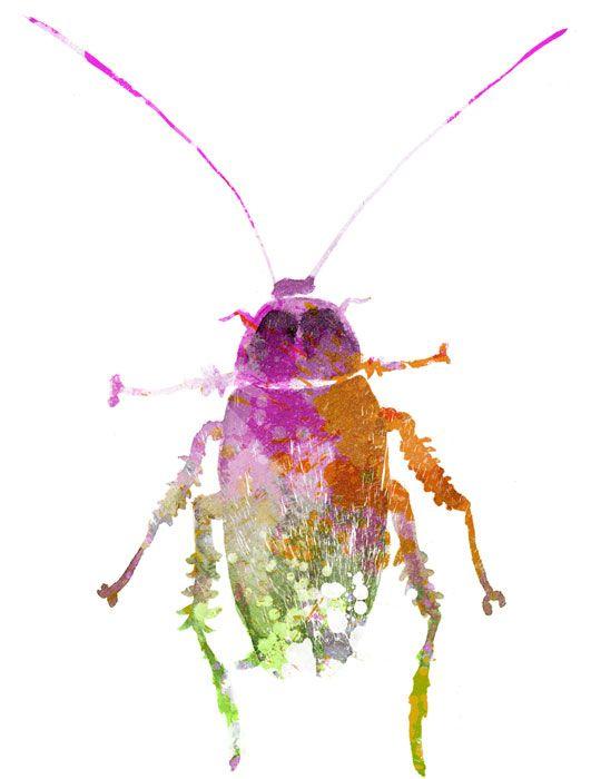 acuarela insectos - Buscar con Google | Partes | Pinterest ...