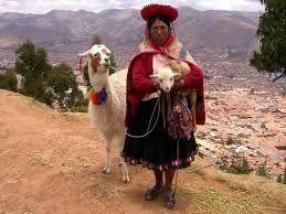 llamas peruanas - Buscar con Google