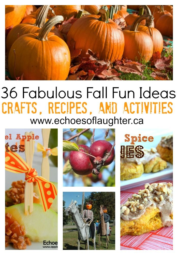 36 Fabulous Fall Fun Ideas Craft