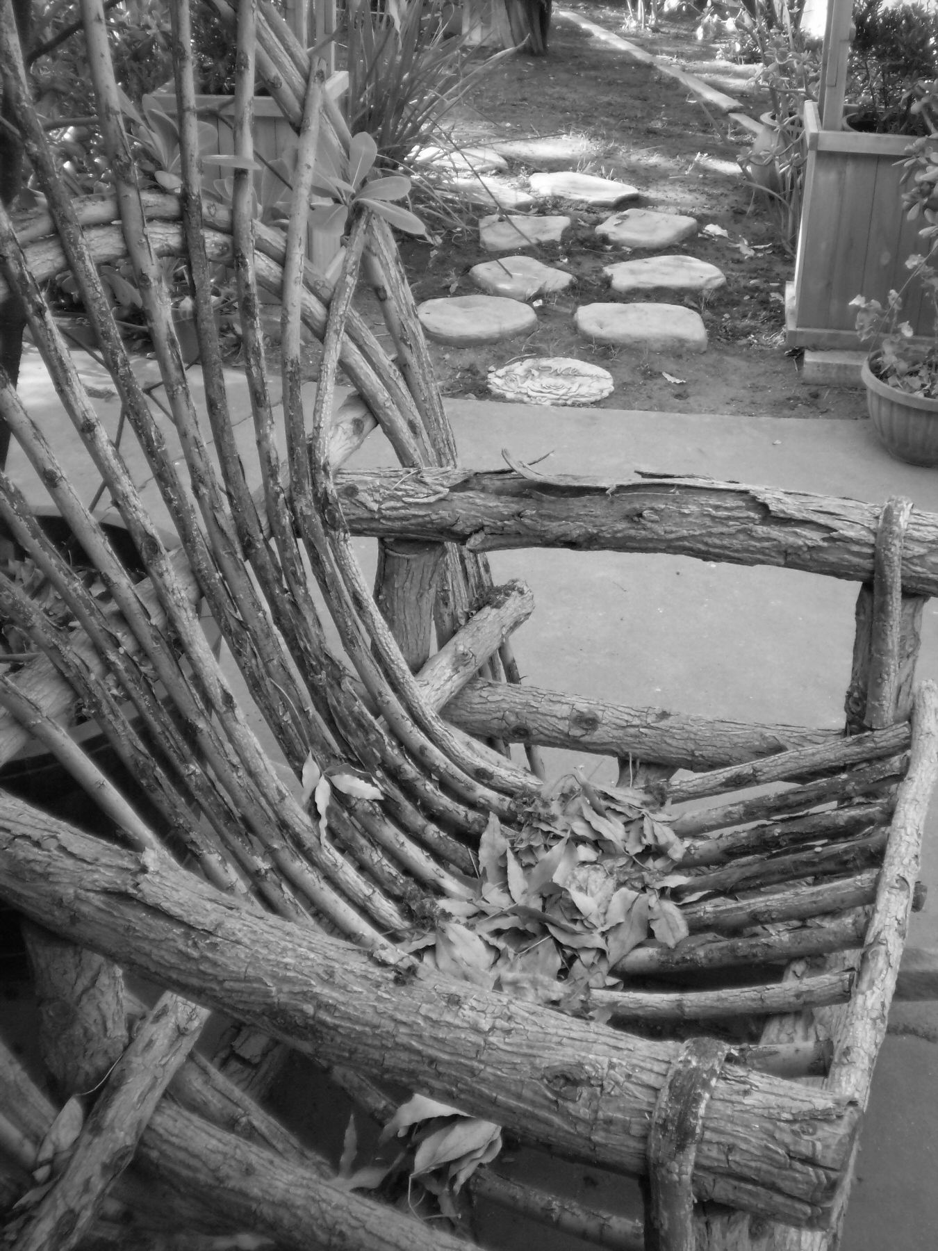 rustic lawn chair (Mom's patio,2008)