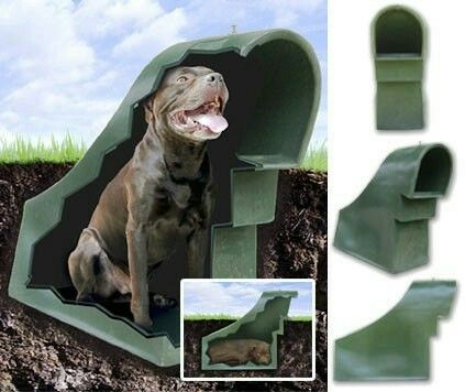 21st Century Eco Friendly Dog House The 21st Century Eco Friendly