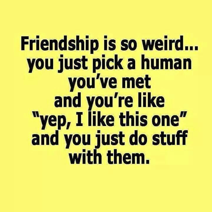 Friendship Funny Pinterest Friendship Friendship Quotes And Extraordinary Serious Quotes About Friendship