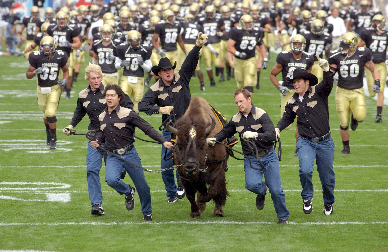 Ralphie The Buffalo University Of Colorado Holiday September 2