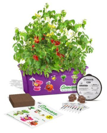 My Kids Would Really Love This Children S Herb Gardening Kit