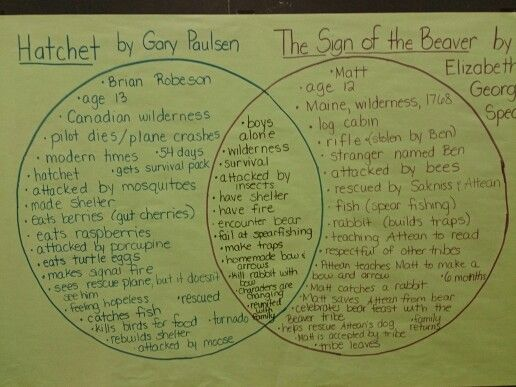 Venn Diagram Comparing Two Novels