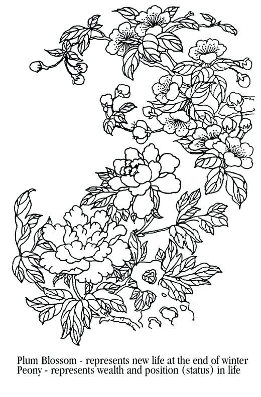 Cherry Blossom Coloring Pages Cherry Blossom Coloring