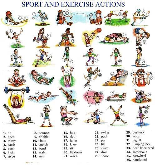 sports sport vocabulary 1 educacion ingles vocabulario en ingles y temas de ingles. Black Bedroom Furniture Sets. Home Design Ideas