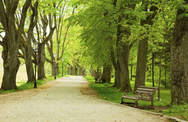 A new urban trail coming to sacramento sacramento trail