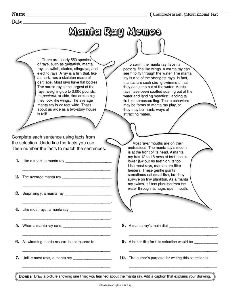 The Mailbox Ocean Lesson Plans Word Skills Informational Text Passages