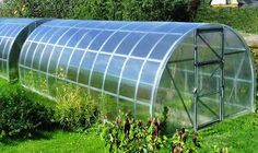Commercial Polycarbonate Tunnels Greenhouses Greenhouse Farming Greenhouse Commercial Greenhouse