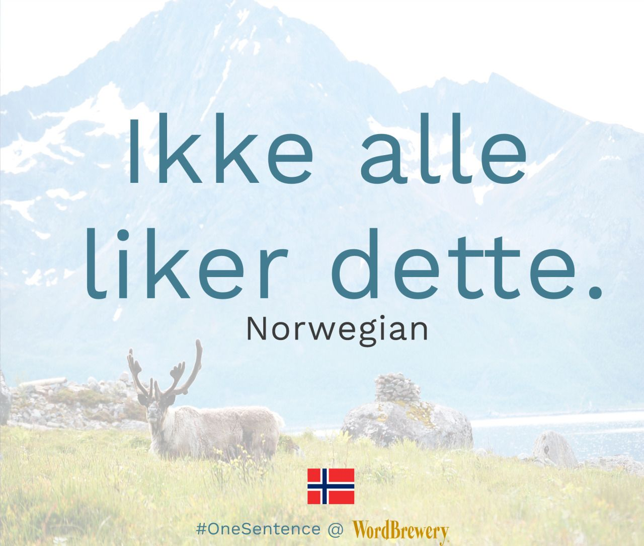 Ikke Alle Liker Dette Source Klar Tale Useful Words And Phrases Ikke Not Alle Everyone Liker Likes Det Norway Language Learning Languages Language