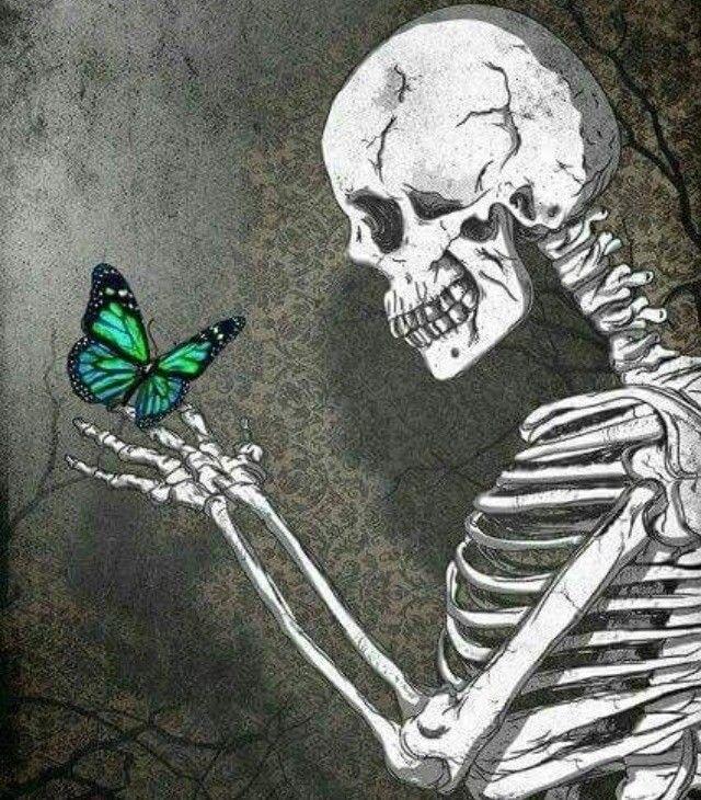 Pin By Meri Keiser On Halloween Skulls & Skeletons