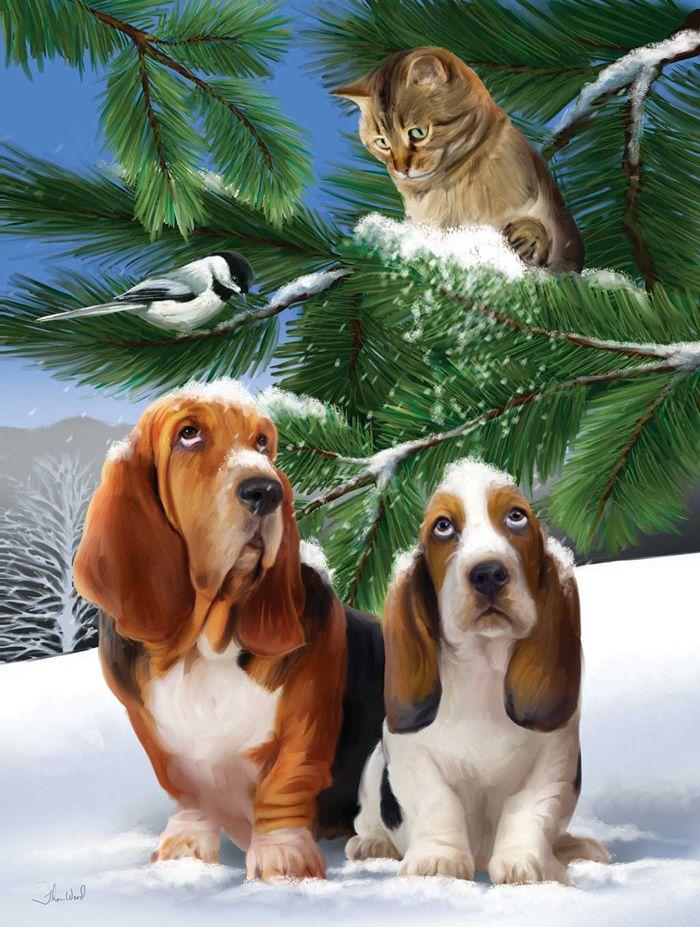 Открытки с животными кошки собаки