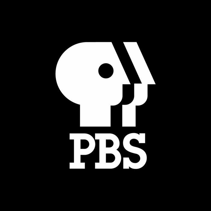 Pbs By Chermayeff Geismar 1984 Logo Branding Design