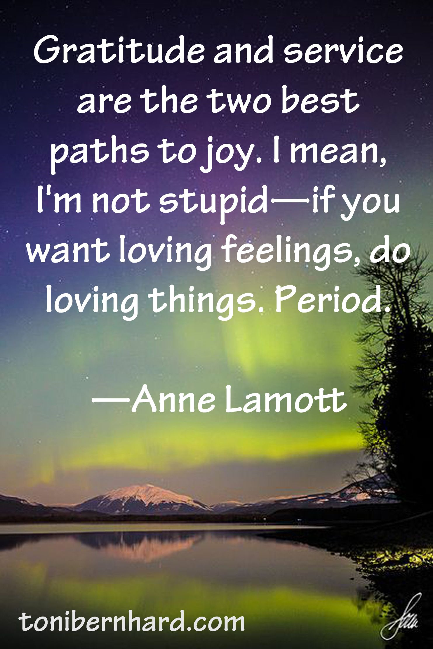 Pin By Yippeemovement Org On How To Be Happy Anne Lamott Quotes Anne Lamott Cool Words