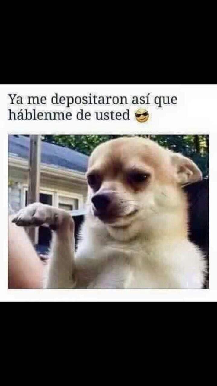 Pin By Valeria On Favorite Tweets Spanish Humor Mexican Humor Humor