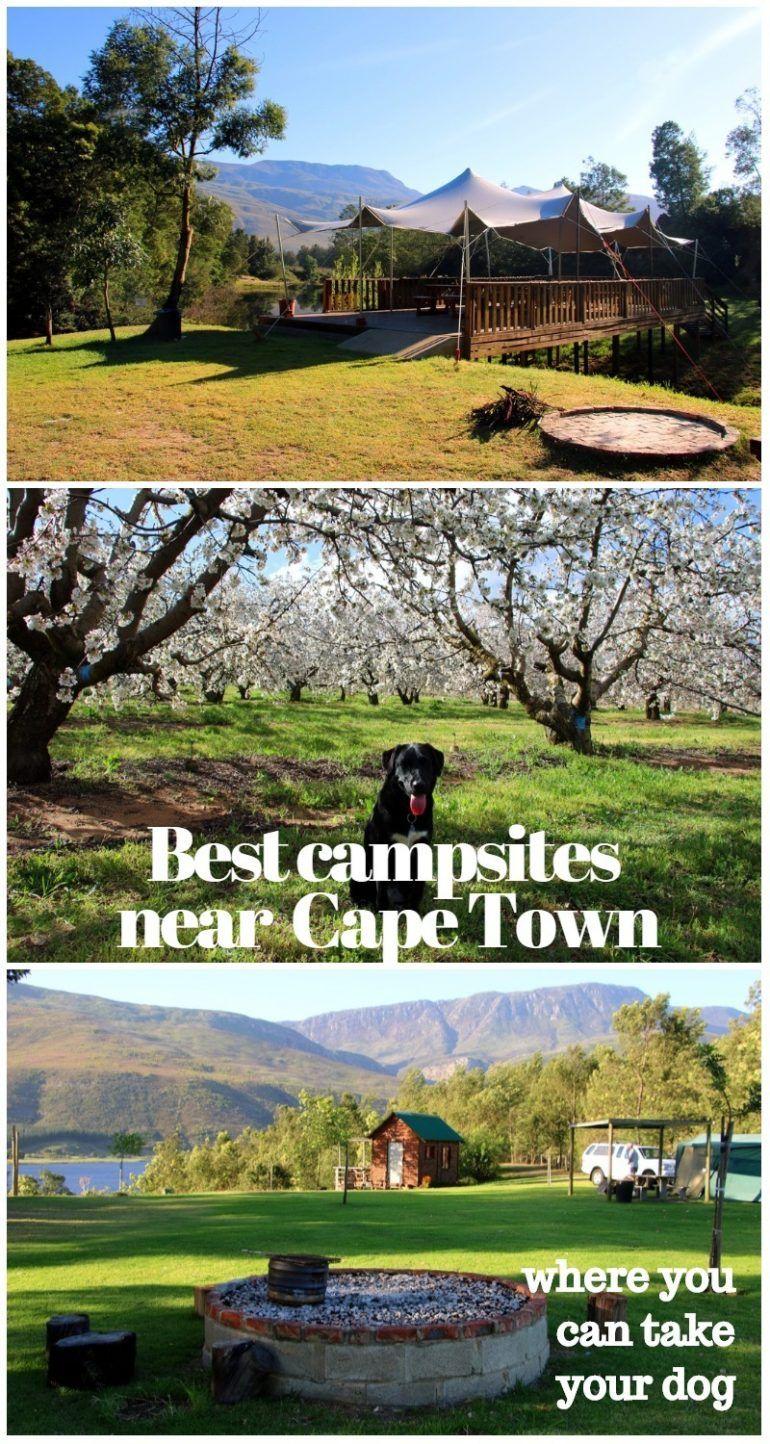 Best dogfriendly campsites in western cape africa