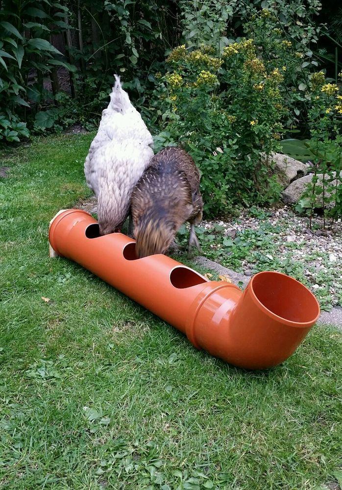Geflügeltränke, Hühnertränke oder Futtertrog, neu! | hühner ...