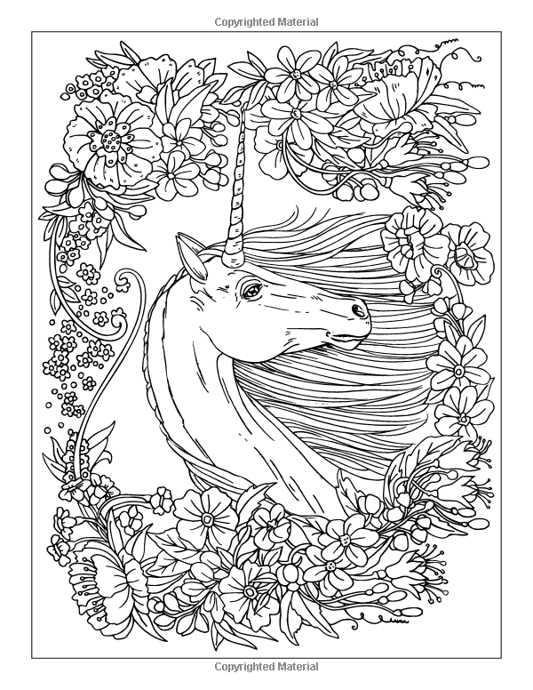 Amazon Enchanting Unicorns Noninteractive Colouring Book Magical Horses 1