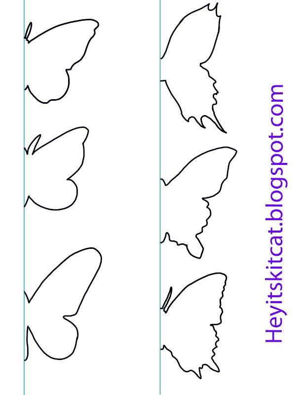 Butterflies 618x800 Pixels