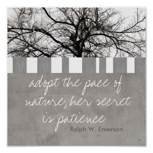 poster Ralph W. Emerson quote photography by Ann Powell at #zazzle #quote #quotes #emerson #poster #posters #decor