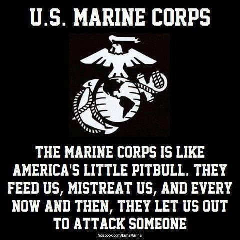 Usmc Quotes The Truth Is Out Marine Corps  Pinterest  Truths Usmc And Marines