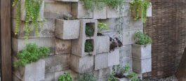 10 Ways to Make Cinder Block Furniture (That Doesn't Look Totally Terrible) #betonblockgarten 10 Ways to Make Cinder Block Furniture (That Doesnt Look Totally Terrible) #cinderblocks #betonblockgarten 10 Ways to Make Cinder Block Furniture (That Doesn't Look Totally Terrible) #betonblockgarten 10 Ways to Make Cinder Block Furniture (That Doesnt Look Totally Terrible) #cinderblocks #betonblockgarten