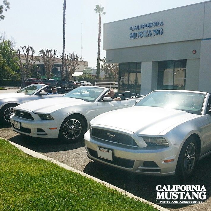2014 Mustang Convertible White & Silver