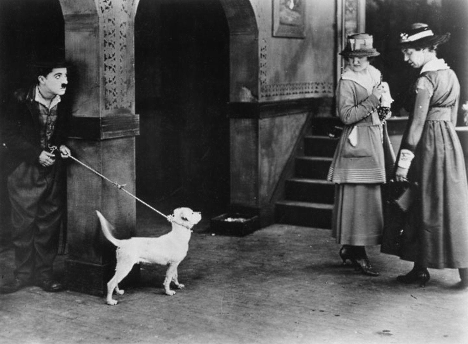 Pin Von ольга антонова Auf Charlie Chaplin