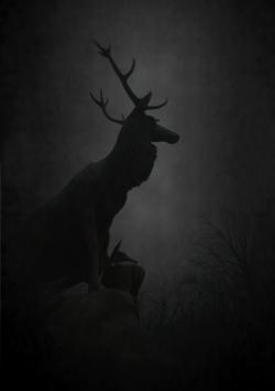 Into the dark night