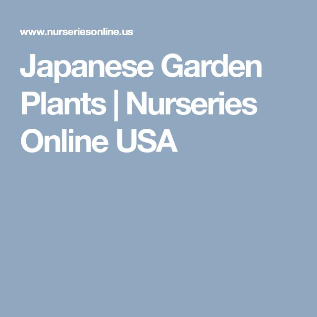 Anese Garden Plants Nurseries Online Usa