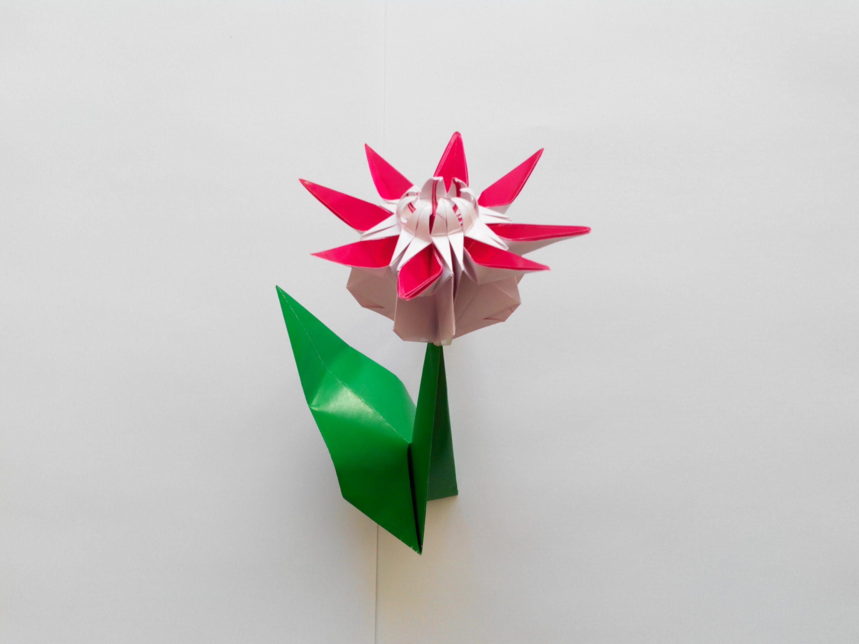 Mio Tsugawa Daisy Flower Origami