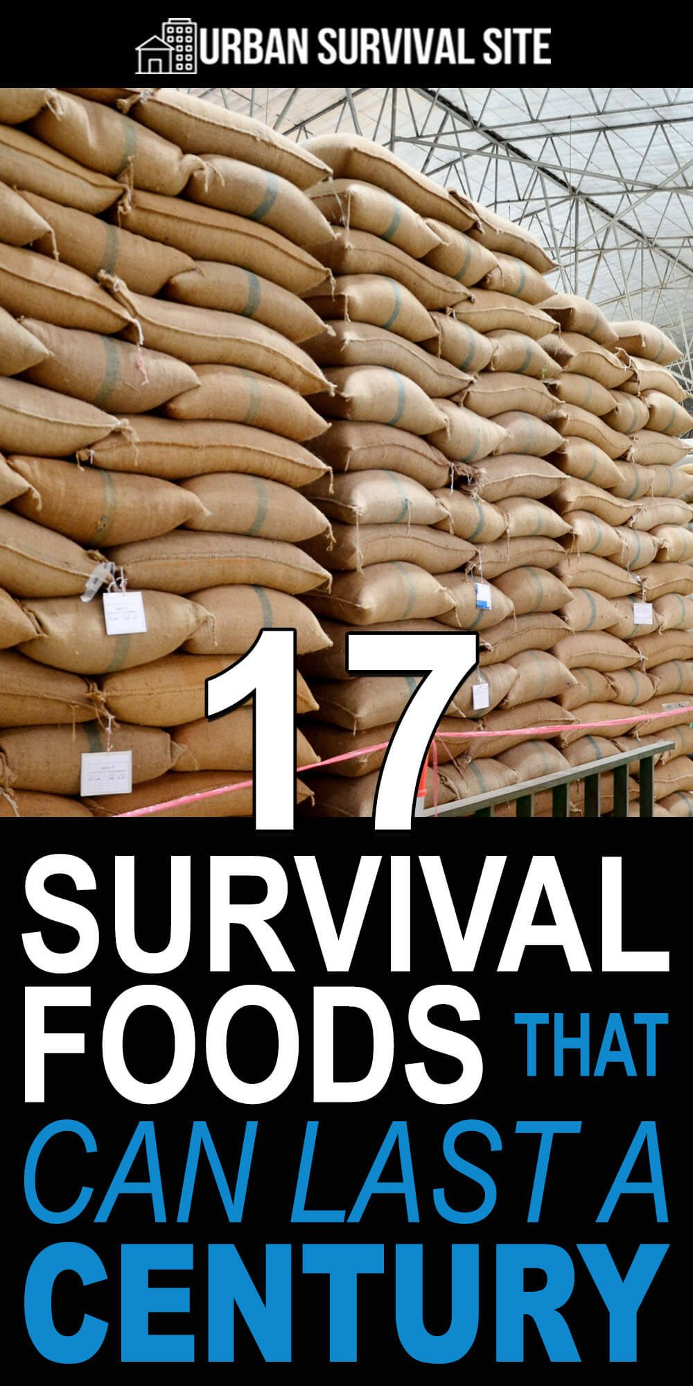 17 Survival Foods That Can Last A Century | Urban Survival Site