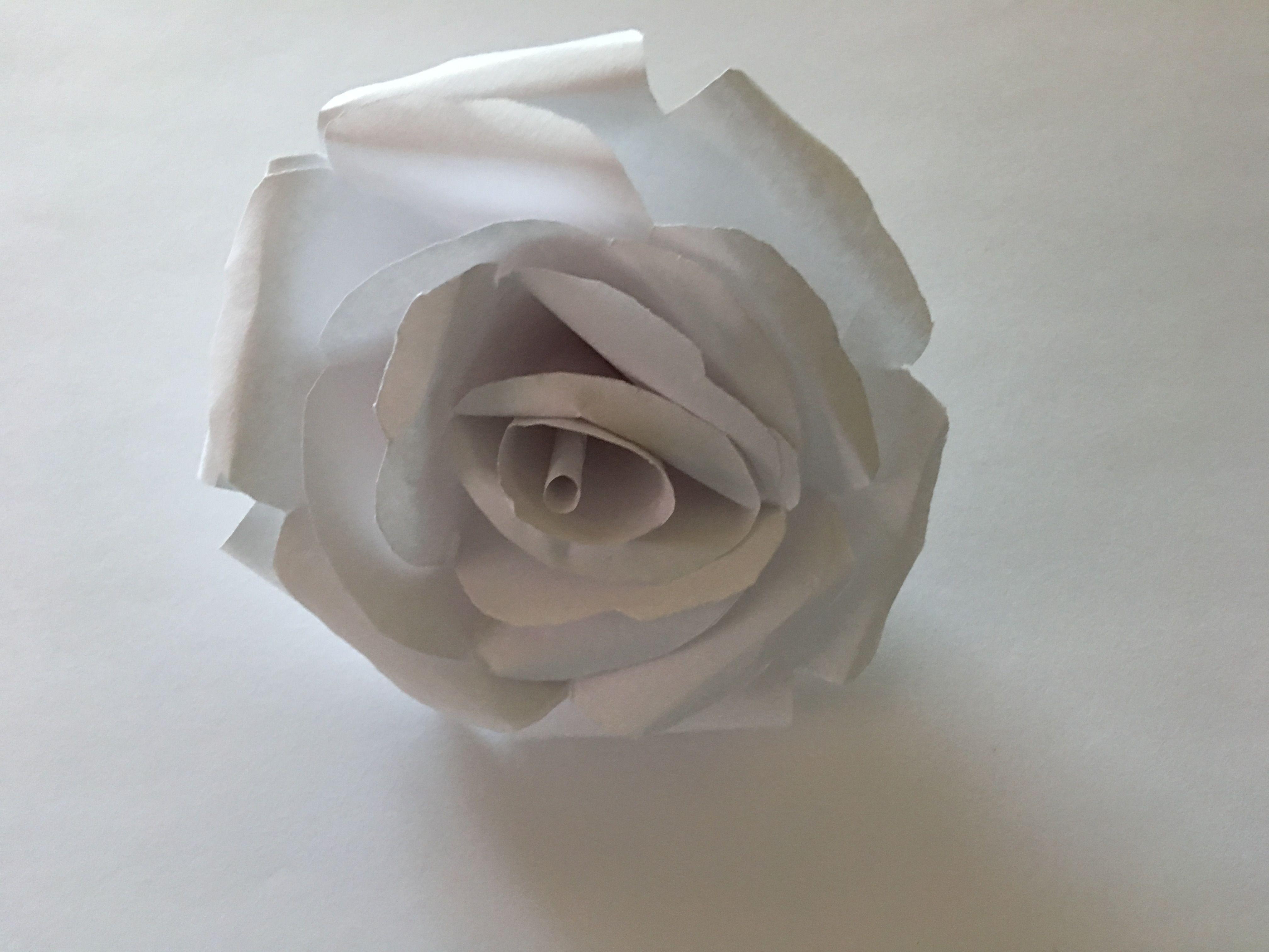 Pin By Celia Reyes On Celias Paper Flowers Pinterest Paper Flowers
