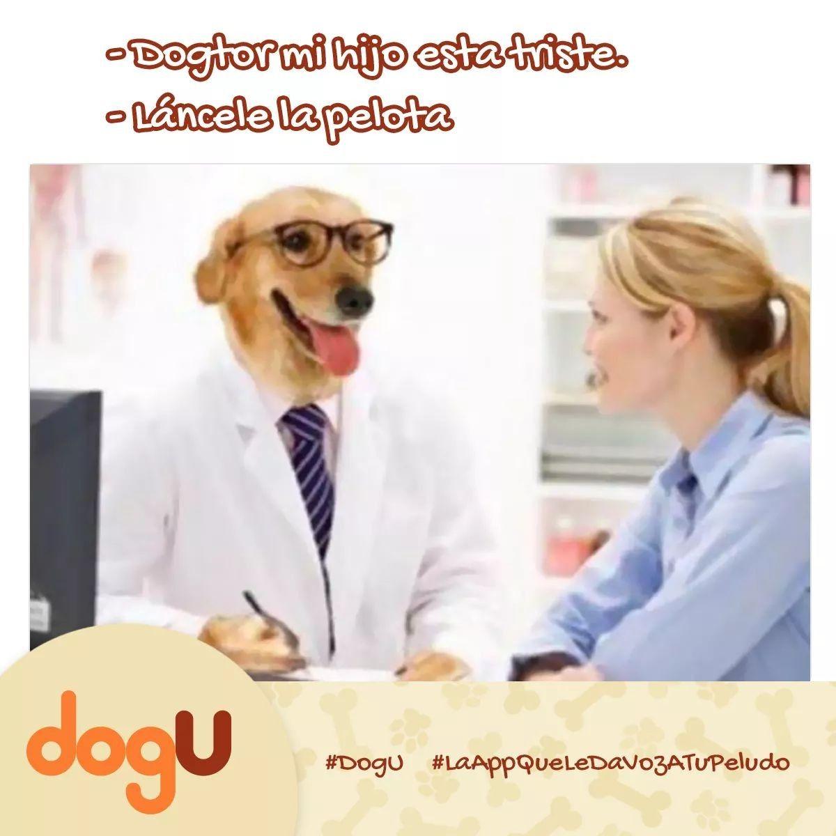 Pin En Dogtor Dogu