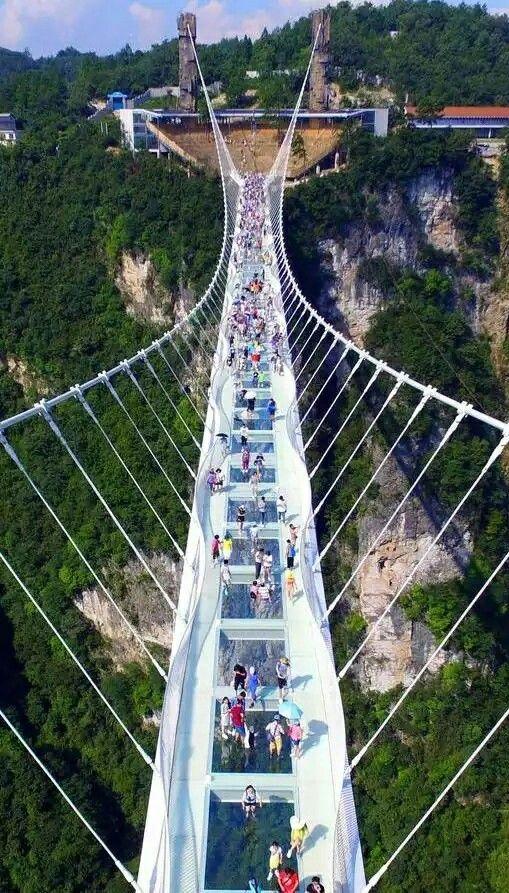 Zhangjiajie Grand Canyon Glass Bridge A 430 Metre Long Glass
