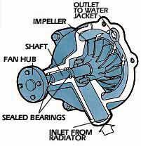replacing your water pump car repair pinterest car repair rh pinterest co uk rocam engine water pump replacement rocam engine water pump replacement