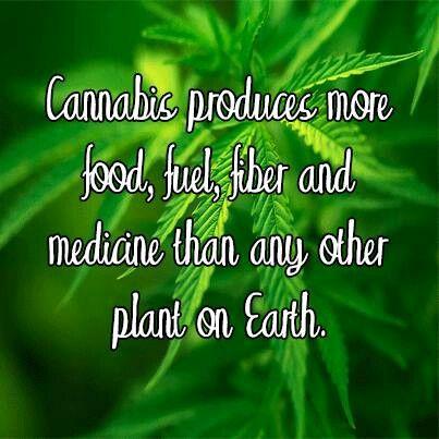 So legalize it already...