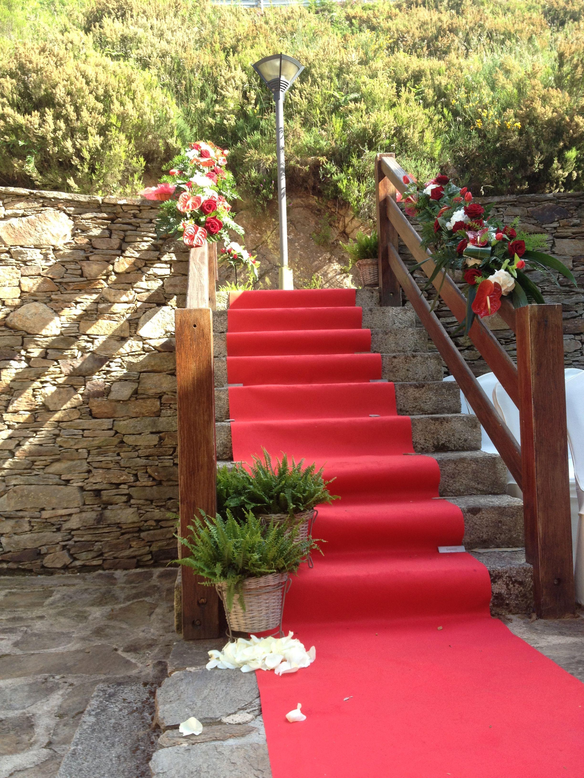 Alfombra roja con helechos sobre las escaleras para la - Alfombras para escaleras ...