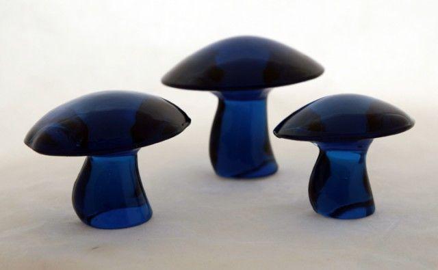 Glas svampar