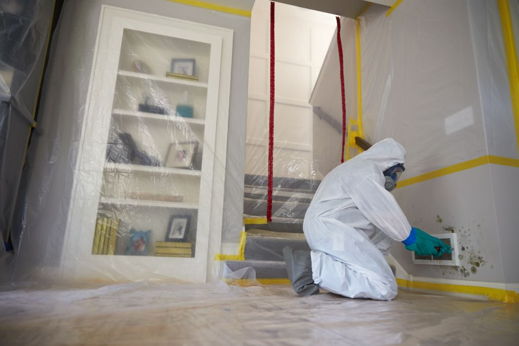 Safety Equipment For Mold Remediation Moldeeze Llc